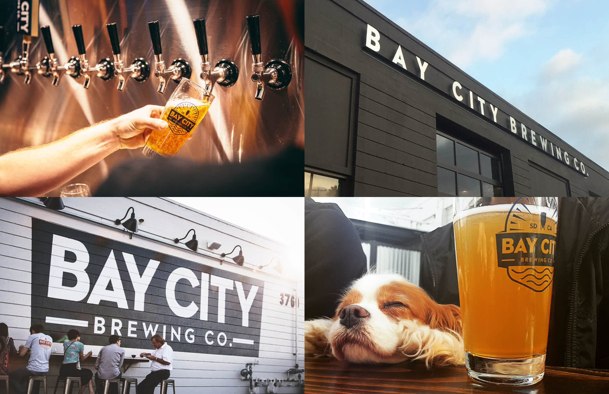 bay-city-brewing-company-san-diego-grid-2